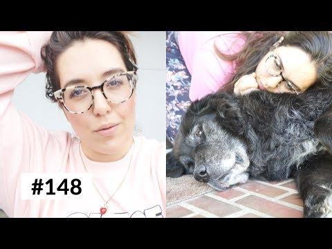 WBP Vlog #148 I Kein Bock mehr! SCHAUT EUCH AN WAS PASSIERT  - für mehr Liebe.