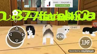 Я показываю суть игры симулятор кота 3D ಠ_ಠ