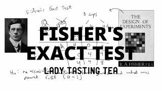 Fisher's Exact Test | Lady Tasting Tea