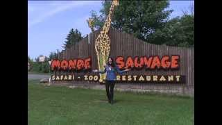 Benelux De Voyage | Monde Sauvage