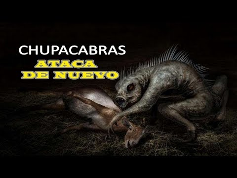 "NUEVA EVIDENCIA DE ATAQUE ""CHUPACABRAS"" EN MEXICALI MEXICO Con Stalin Valle tema OVNI"