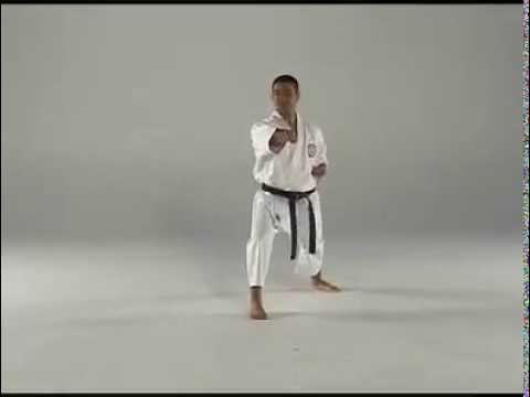 1st Kata - Taigyoku Shodan