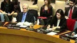 Comitê de Direitos Humanos da ONU condena Síria