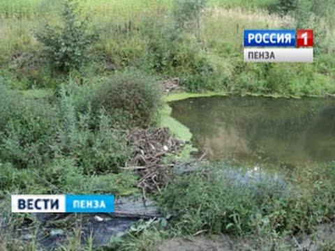 Житель Кузнецка жестоко избил знакомого и утопил его в реке