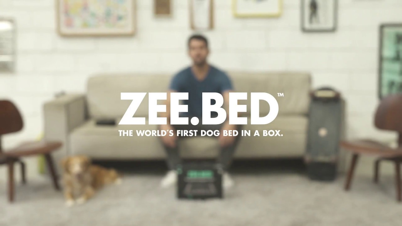 Bed The World S First Dog In A Box