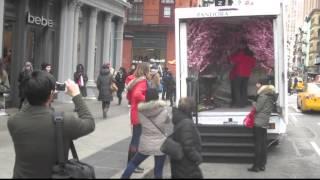 Bulldog Mobile Billboards Campaigns For Pandora® Jewelry
