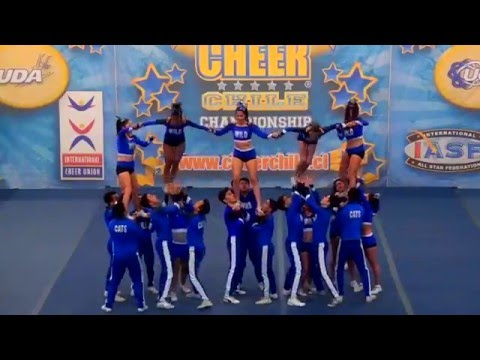 Wildcats Royal Cats Cheer Chile 2015