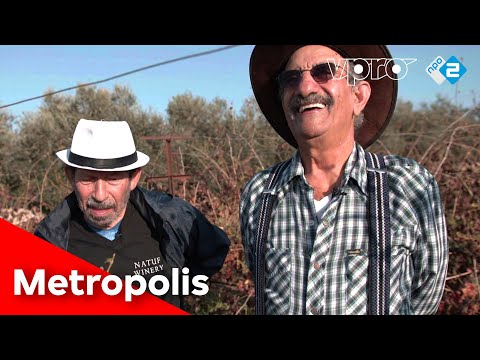Never Retired In Israel In Israel | VPRO Metropolis