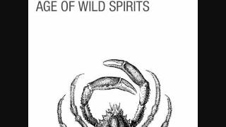 Caddywhompus - Age of Wild Spirits