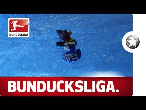 The BunDucksLiga 2015 - The Final