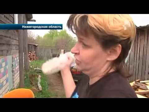 В Нижегородской области жительница одного из посёлков обвиняет в избиении главу администрации