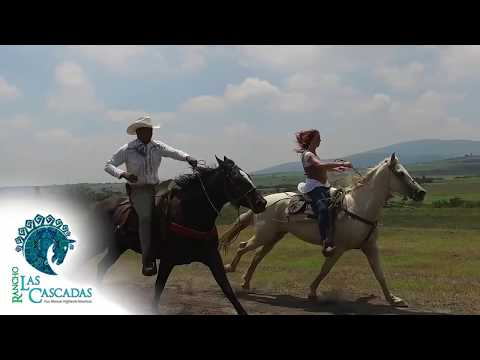Rancho Las Cascadas - Best Horseback Riding & Wellness Vacation