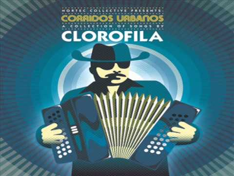 discografia de nortec collective bostich fussible