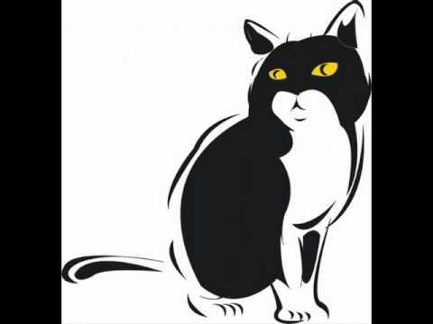 Volevo Un Gatto Nero - Gabry Ponte Remix