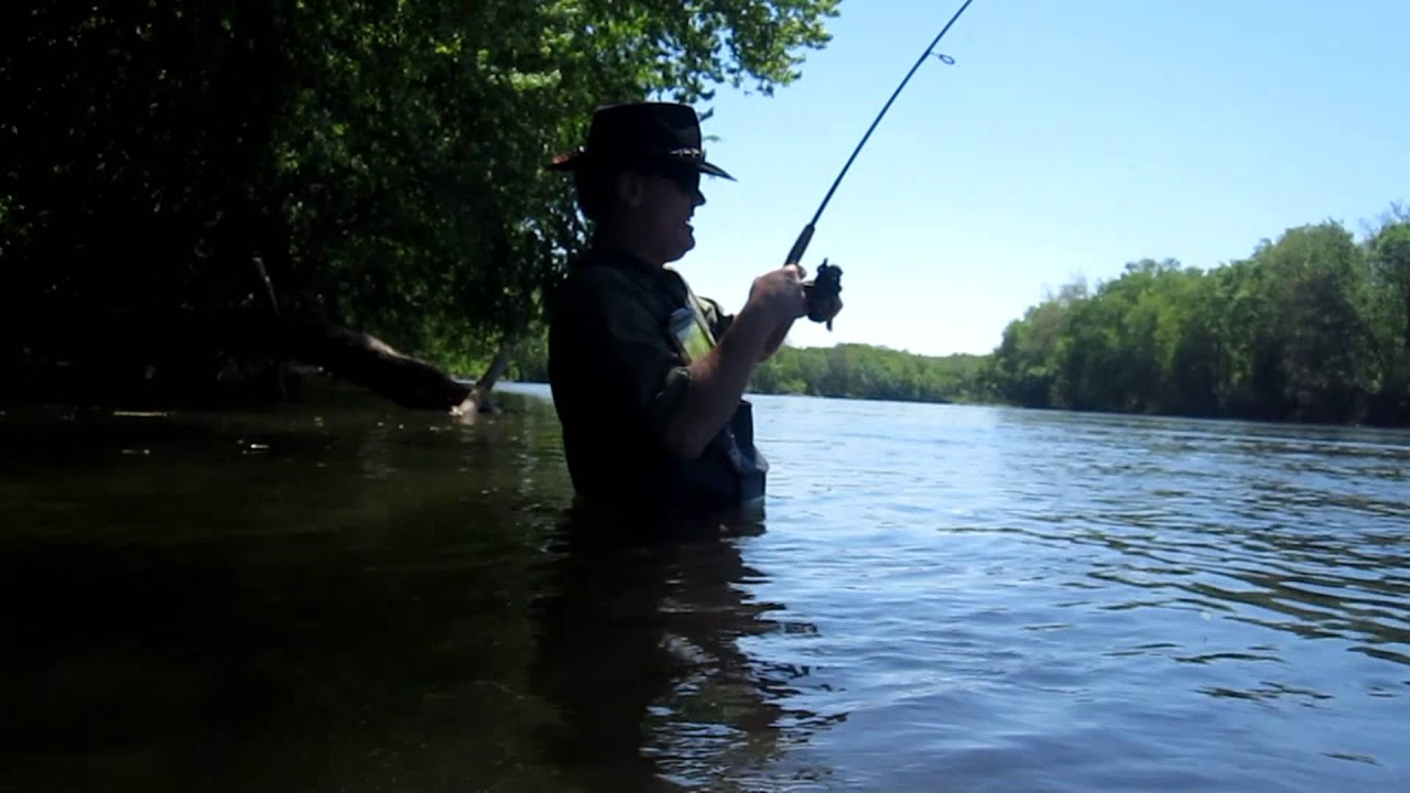 Shad fishing in the delaware river with ken beam from for Nj fishing reports freshwater