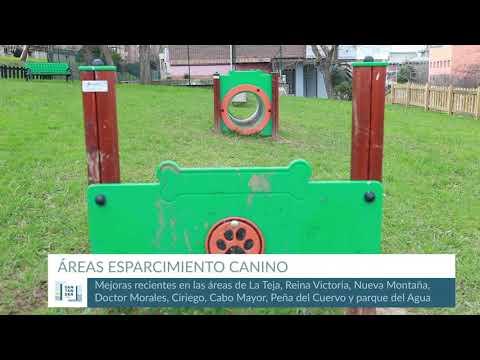 Mejora de las áreas de esparcimiento canino de Santander