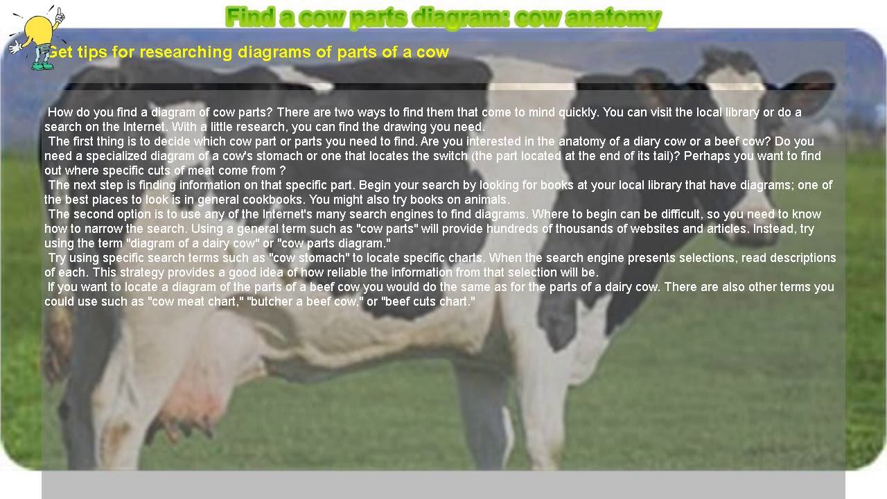 Dairy Cow Parts Diagram Lighting Wire How To Find A Anatomy Youtube