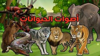 أصوات حيوانات الغابة للأطفال