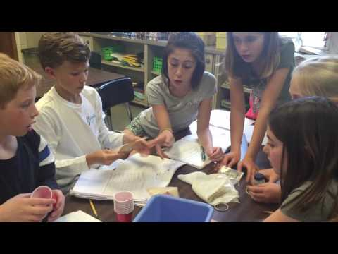 Water SCIENCE - Water Filtration Activity