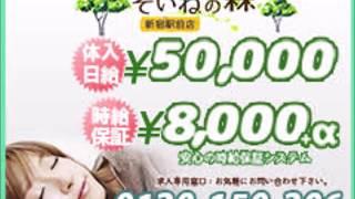 そいねの森新宿駅前店のお店動画