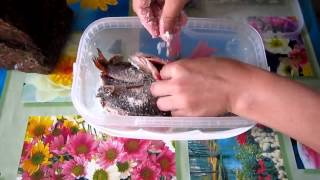 видео Как засолить карася для сушки в домашних условиях?