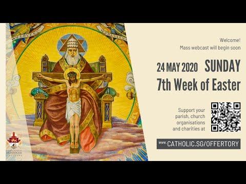 Catholic Sunday Mass Today Live Online - Sunday, 7th Week Of Easter 2020 - Livestream