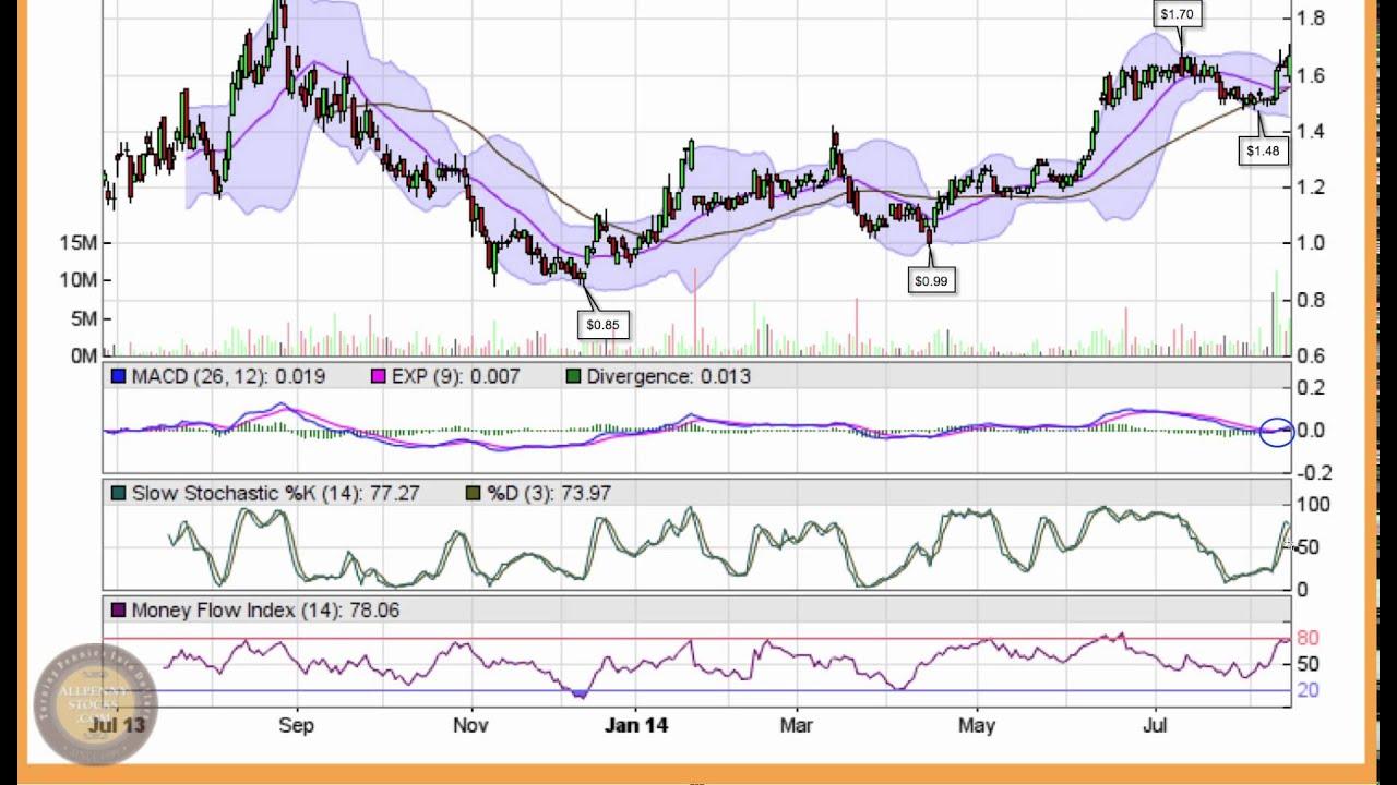 torex gold stock price