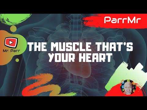 The Muscle That's Your Heart Song