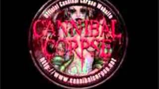 Скачать Cannibal Corpse Zero The Hero