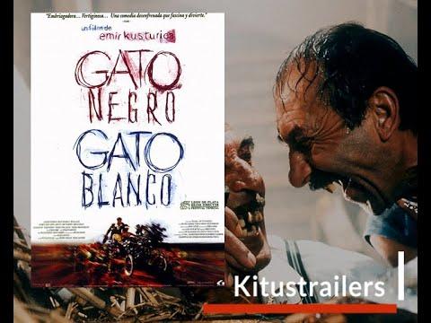 Trailer do filme Gato Negro
