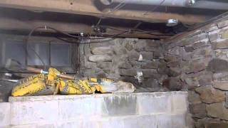 Century Home Basement Crawlspace Digging out by hand