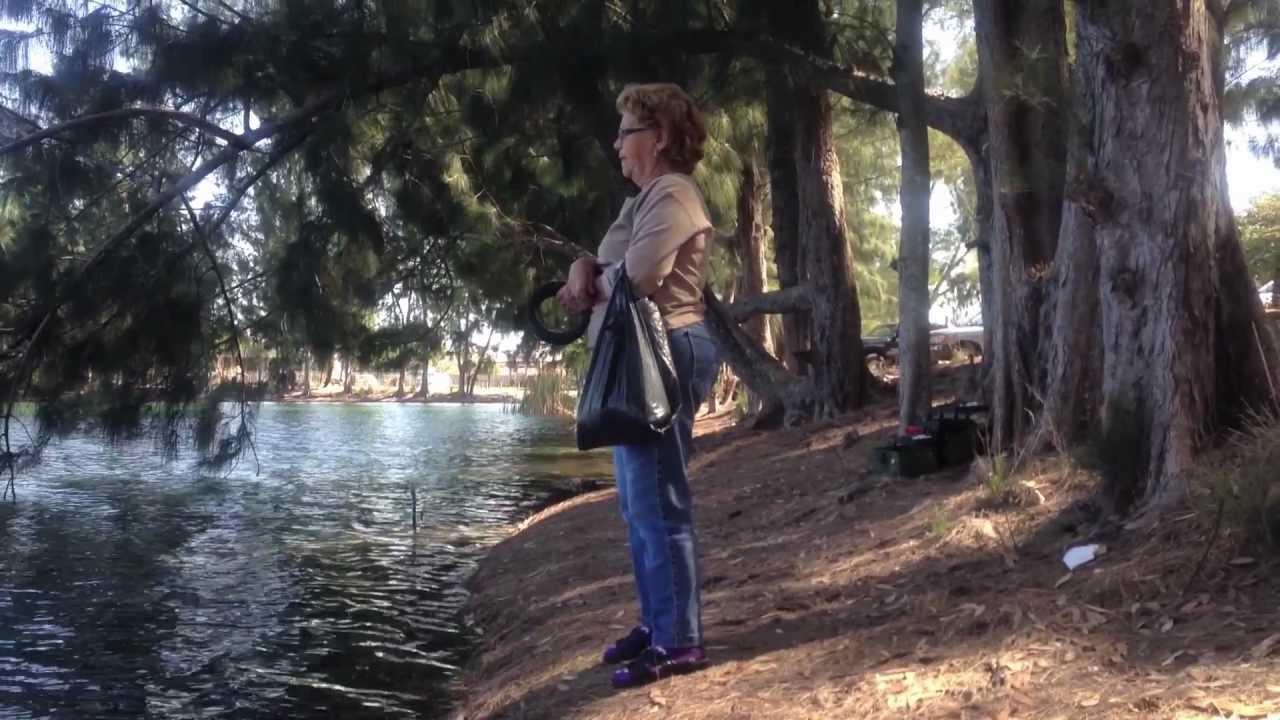 Mima fishing in wolf lake park davie fl youtube for Buy florida fishing license online