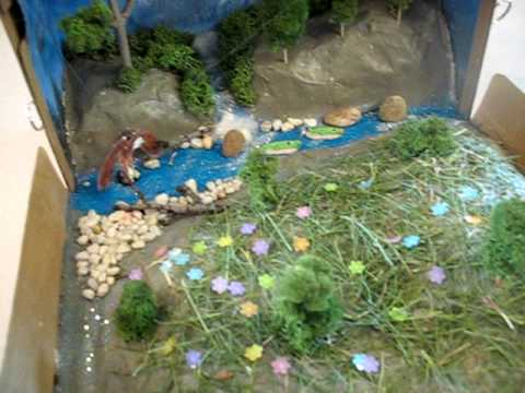 How To Make Rainforest In A Shoebox School Project Doovi