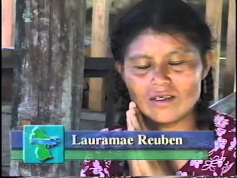 Wings Over Guyana Part 1. Historic beginnings of GAMAS, the Guyana experiment