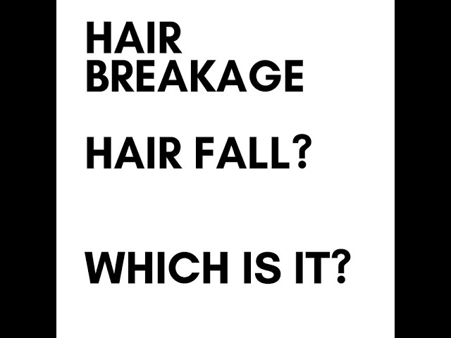 Hair Breakage & Hair fall: and why you should be concerned!