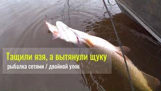 Тащили язя а вытянули щуку рыбалка сетями двойной улов