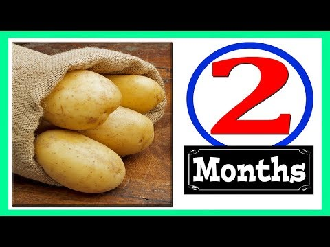 Download How To Store Potatoes MP3, MKV, MP4 - Youtube to MP3