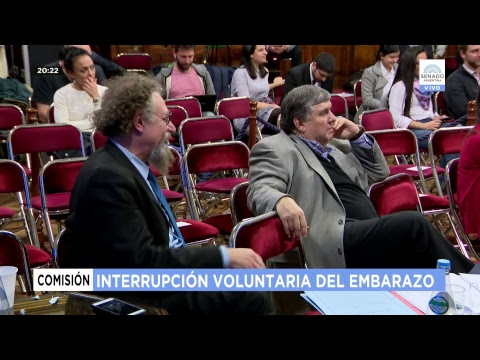 PLENARIO INTERRUPCIÓN VOLUNTARIA DEL EMBARAZO 18-07-18
