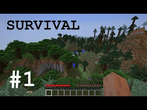 Minecraft Survival ITA (v. 1.11.2) | [Ep.1] - Un nuovo inizio