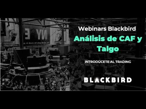 Análisis de CAF y Talgo