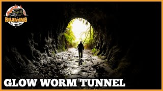 Glow Worm Tunnel - Wollemi National Park - Great Bush Walks