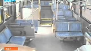 Олененок выбил лобовое стекло автобуса(Олененок выбил лобовое стекло автобуса. Видео Выпуск от 17.05.2013 В США камера наблюдения, установленная в..., 2013-05-17T15:03:20.000Z)