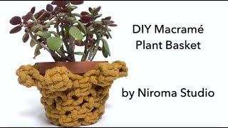 DIY Macrame Plant Basket Tutorial by Niroma Studio