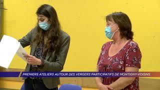 Yvelines   Premiers ateliers autour du verger participatif de Montigny-Voisins