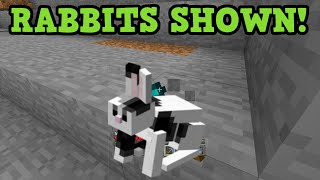 Minecraft Xbox 360 / PS3 - TU31 Screenshot RABBITS Confirmed!