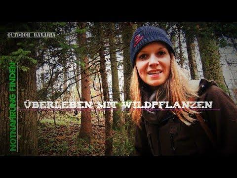 Notnahrung finden - Überleben mit Wildpflanzen - Outdoor Bavaria - Bushcraft & Survival