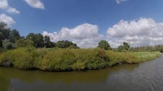 Vaartocht door de Biesbosch