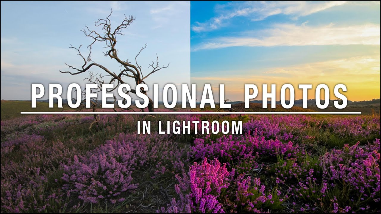 How to make a professional photo