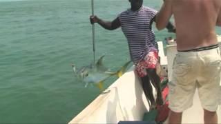 Julien-Carangues-Bijagos-Guinee-Bissau.mpeg