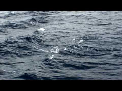 Entrevista - Marinha indeniza por Suicídio do CABO LUCAS na BNRJ from YouTube · Duration:  20 minutes 24 seconds